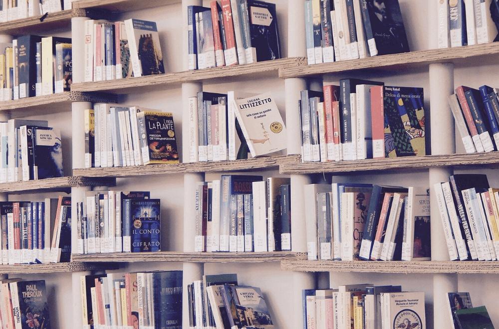 Quais os melhores livros de contabilidade? Conheça os 13 principais títulos que todo profissional da área precisa ler!