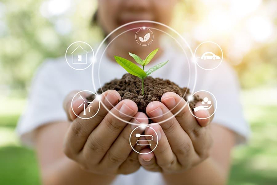 O que é contabilidade ambiental? Tudo sobre essa vertente contábil que pode impactar positivamente seus resultados